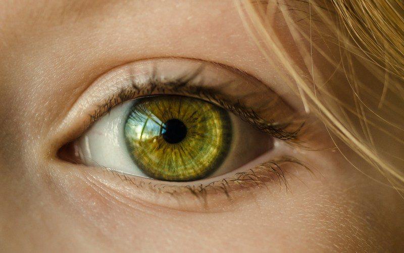 El Mejor Contorno de Ojos – Top 5 en 2018