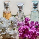 Los Mejores Perfumes de Mujer – Top 15 del 2019